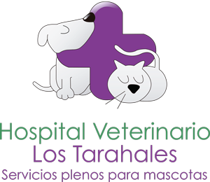 Hospital Veterinario Los Tarahales